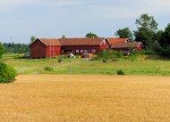Farm bei Stockholm
